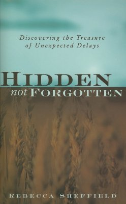 Hidden, Not Forgotten: Discovering the Treasure of Unexpected Delays Rebecca Sheffield