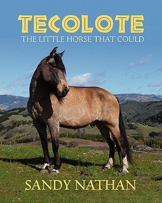 Tecolote: The Little Horse That Could Sandy Nathan
