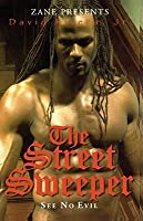 The Street Sweeper (See No Evil)  by  David Rivera Jr.