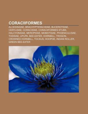 Coraciiformes: Hoopoe Books LLC