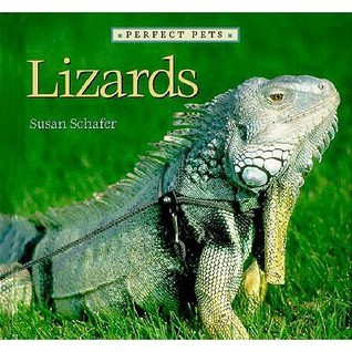 Lizards  by  Susan Schafer