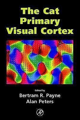 The Cat Primary Visual Cortex Bertram R. Payne