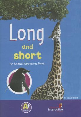 Long and Short  by  Lisa Bullard