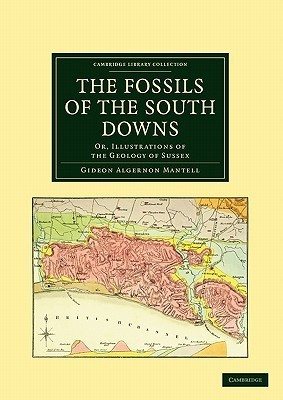 The Fossils of the South Downs: Or, Illustrations of the Geology of Sussex  by  Gideon Algernon Mantell