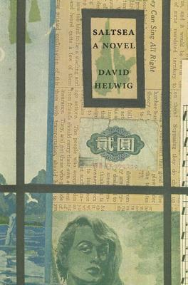 Saltsea David Helwig