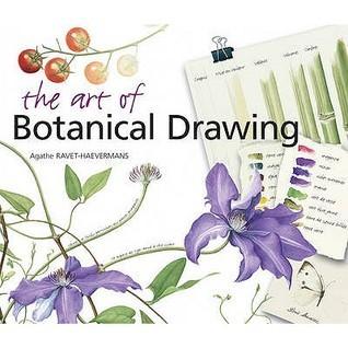 The Art Of Botanical Drawing Agathe Ravet-Haevermans