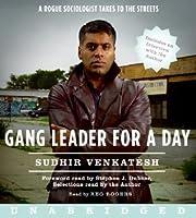 Gang Leader for a Day: Gang Leader for a Day