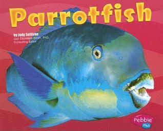 Parrotfish  by  Jody Sullivan Rake