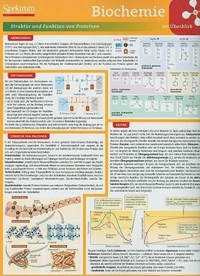 Lerntafel: Biochemie im Uberblick  by  Birgit Jarosch