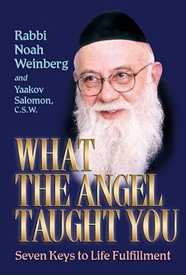 What the Angel Taught You  by  Noah Weinberg