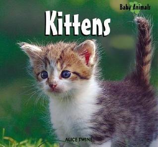 Kittens Alice Twine