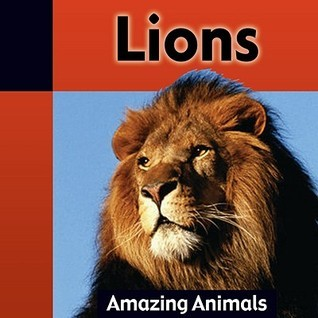 Lions  by  Jacqueline Dineen