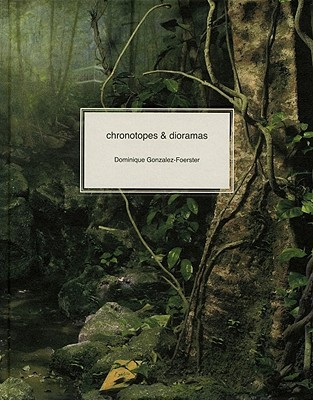 Chronotopes & Dioramas: Atlantic, Desert, Tropics  by  Dominique Gonzalez-Foerster
