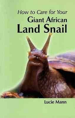 Your First Giant African Land Snail (Your First...Series) Lucie Mann