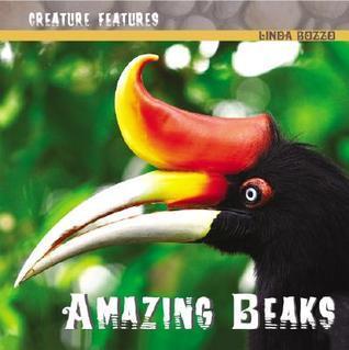 Amazing Beaks  by  Linda Bozzo