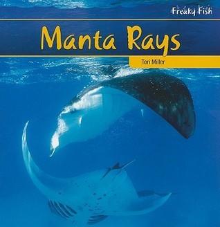 Manta Rays  by  Tori Miller