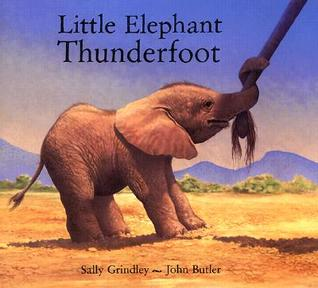 Little Elephant Thunderfoot  by  Sally Grindley