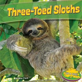 Three-Toed Sloths Willow Clark