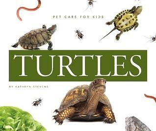 Turtles  by  Kathryn Stevens