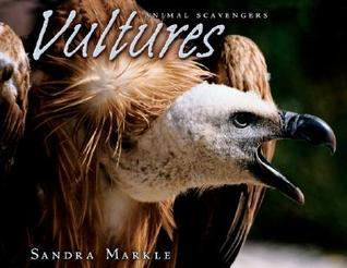 Vultures  by  Sandra Markle