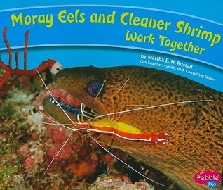 Moray Eels and Cleaner Shrimp Work Together  by  Martha E.H. Rustad