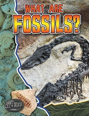 What Are Fossils?  by  Natalie Hyde