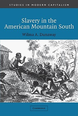 Slavery in the American Mountain South  by  Wilma A. Dunaway