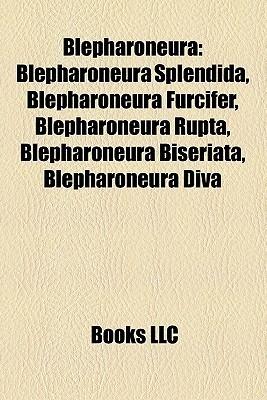 Blepharoneura: Blepharoneura splendida, Blepharoneura furcifer, Blepharoneura rupta, Blepharoneura biseriata, Blepharoneura diva Books LLC