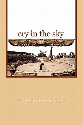 Cry in the Sky  by  Noureddine Zouari
