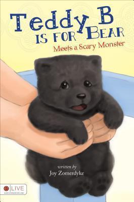 Teddy B Is for Bear: Meets a Scary Monster Joy Zomerdyke