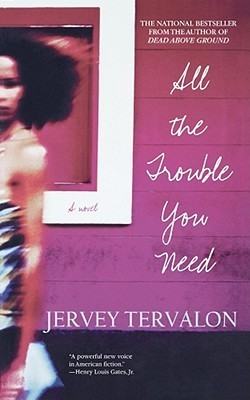 All the Trouble You Need: A Novel  by  Jervey Tervalon