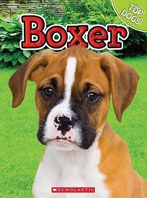 Boxer  by  Charles George