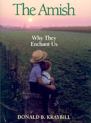 The Amish: Why They Enchant Us  by  Donald B. Kraybill