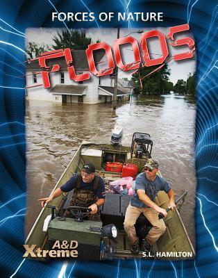 Floods  by  Sue L. Hamilton