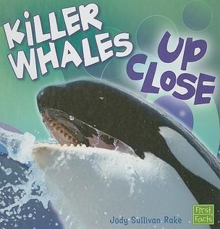 Killer Whales Up Close Jody Sullivan Rake