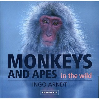 Monkeys and Apes in the Wild  by  Ingo Arndt