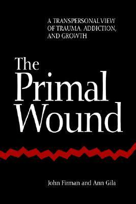 Primal Wound: A Transpersonal View of Trauma, Addiction, and Growth  by  John Firman