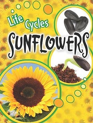 Sunflowers  by  Julie K. Lundgren