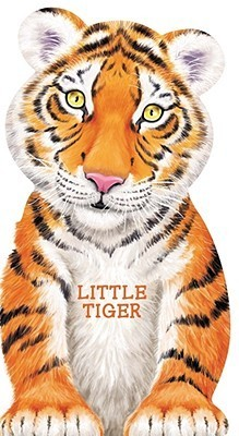 Little Tiger  by  Giovanni Caviezel