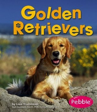 Golden Retrievers Lisa Trumbauer