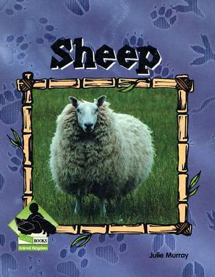 Sheep Julie Murray
