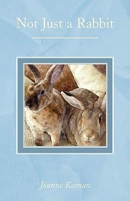 Not Just a Rabbit  by  Joanne Keenan