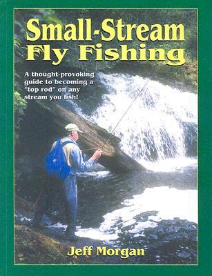 Small-Stream Fly-Fishing Jeff Morgan