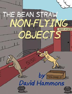 The Bean Straw: Non-Flying Objects  by  David Hammons