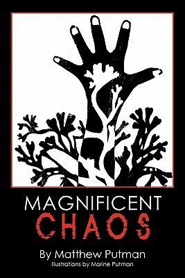 Magnificent Chaos  by  Matthew Putman