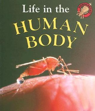 Life in the Human Body  by  Jill Bailey