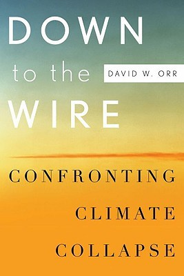 Down to the Wire: Confronting Climate Collapse  by  David W. Orr