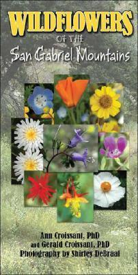 Wildflowers of the San Gabriel Mountains  by  Ann Croissant