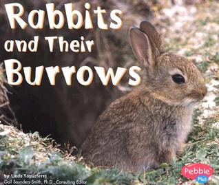 Rabbits and Their Burrows  by  Linda Tagliaferro