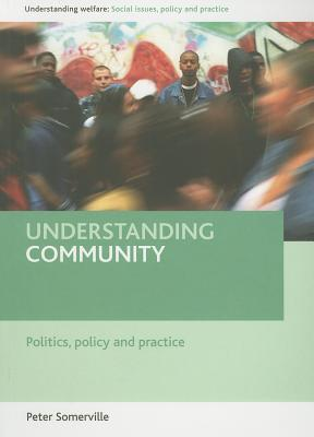 Housing and Social Policy: Contemporary Themes and Critical Perspectives  by  Peter Somerville